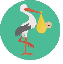 Baby stork.jpg