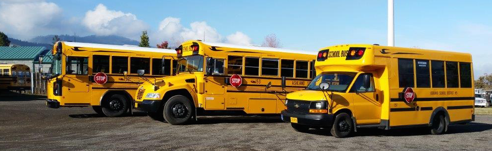 Flat nose buses typically offer more head room, a bump out nose buses are easier to work on the engine, and a short bus are easier to drive / find parking. Depending on your needs there is a bus out there for you waiting for a second life!