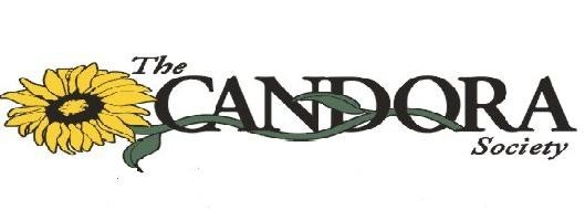 candora(cut)1.JPG