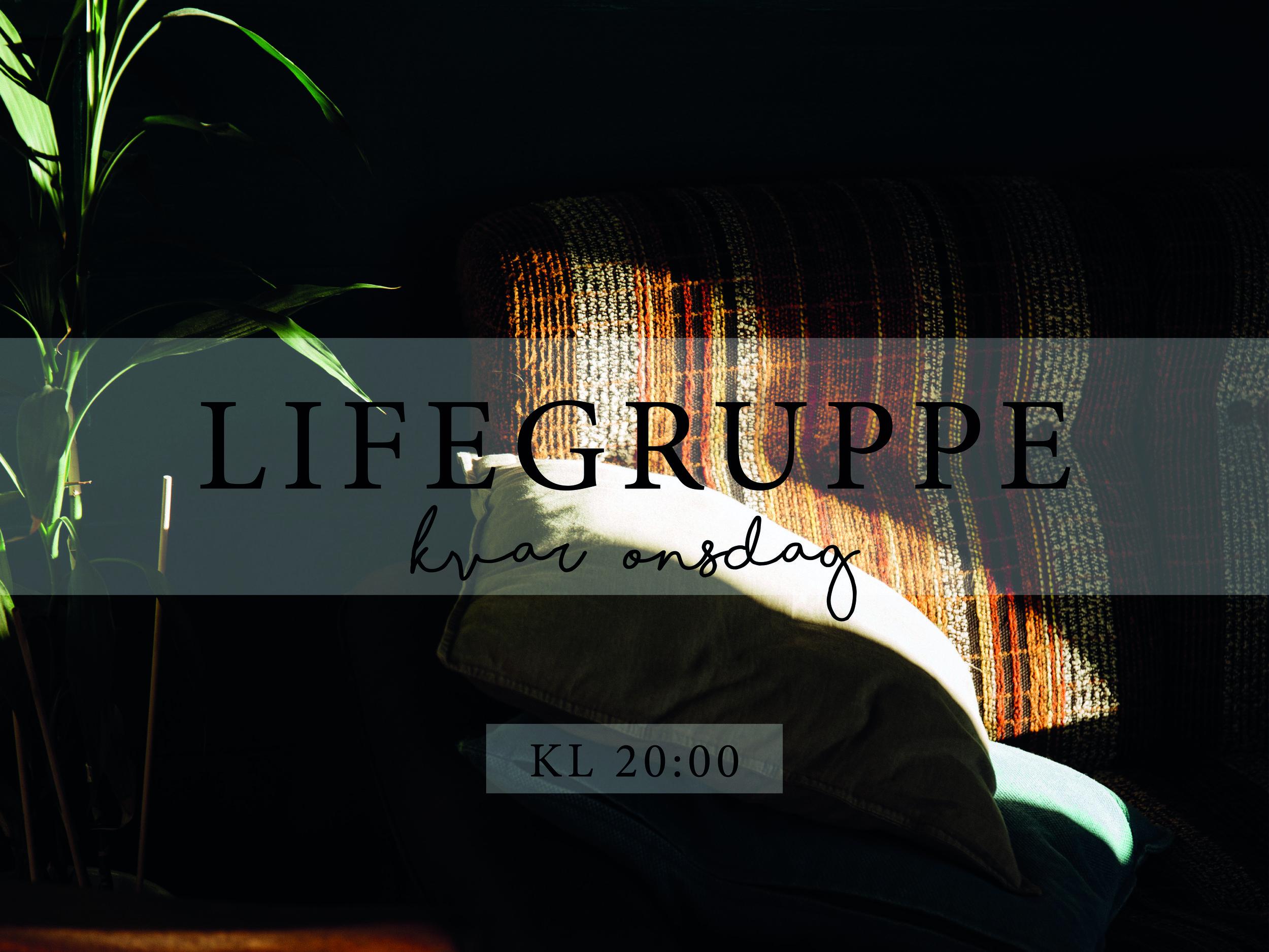 Lifegruppe_skjermbilde.jpg
