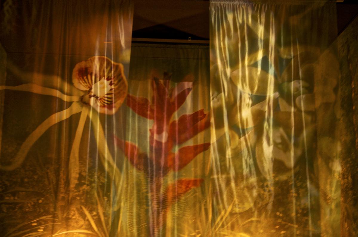 Banners at Corkscrew Sanctuary ©Connie Bransilver