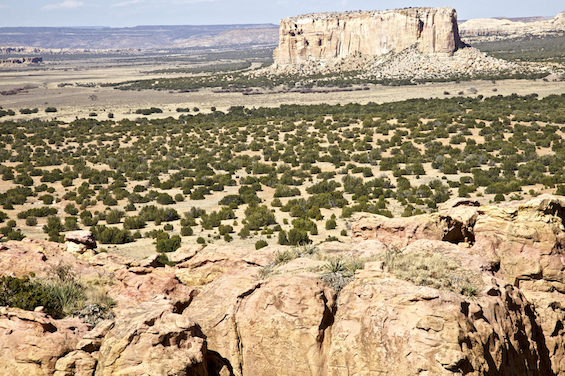 The View From Acoma Pueblo ©Connie Bransilver