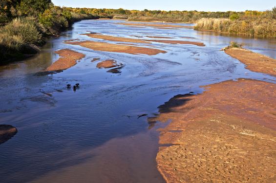 Rio Grande in summer
