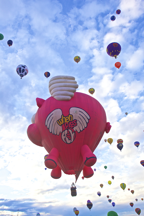 International Hot Air Balloon Festival - When Pigs Fly
