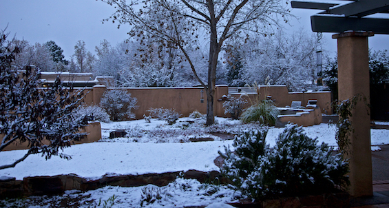 Our garden in snow