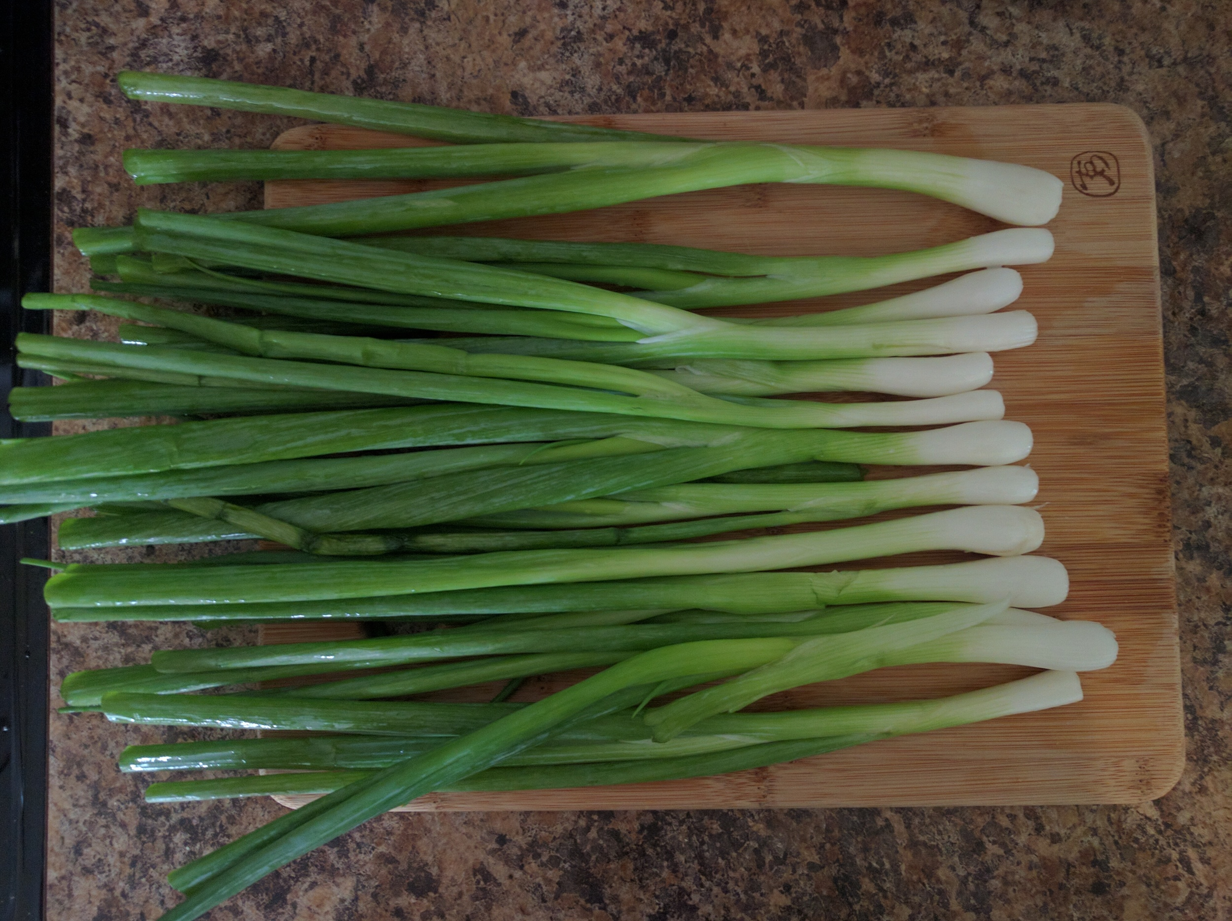 Correct way to chop green onions: cut off the roots & two inches from the green tops first, then slice the rest!