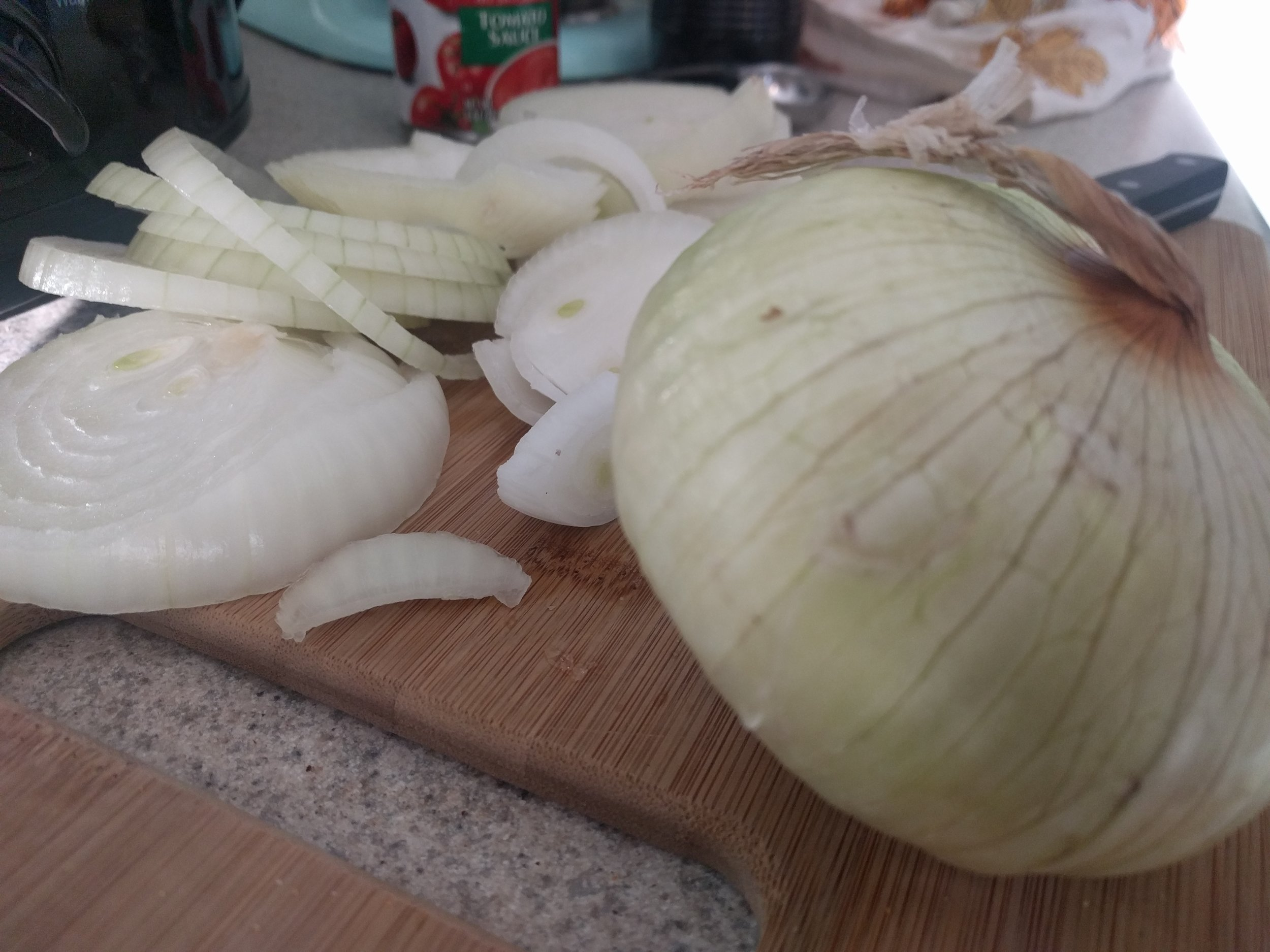 We are HUGE fan of onions...I chopped up FOUR for this meal!