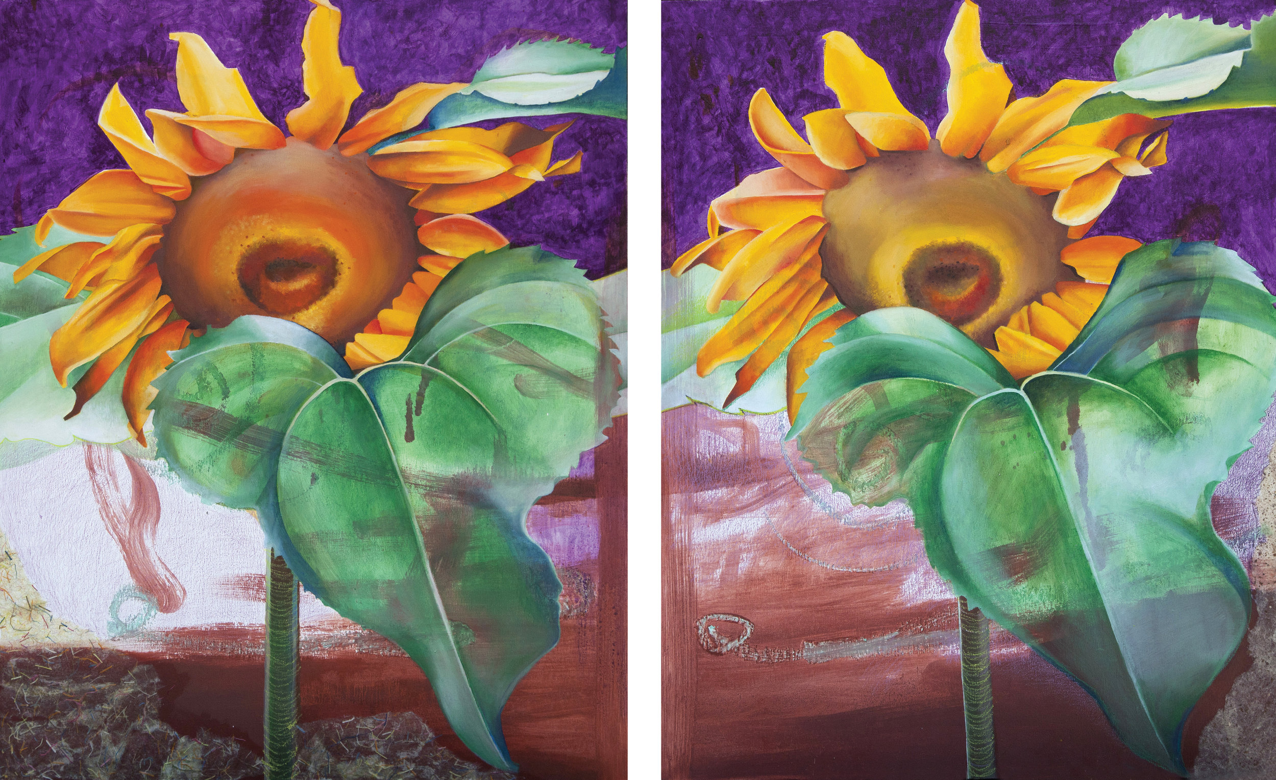 Sunflower One & Two