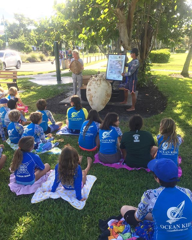 Sea turtle education with Collier County Marine Biologist 🧪 🐢 #OceanKidsCamp