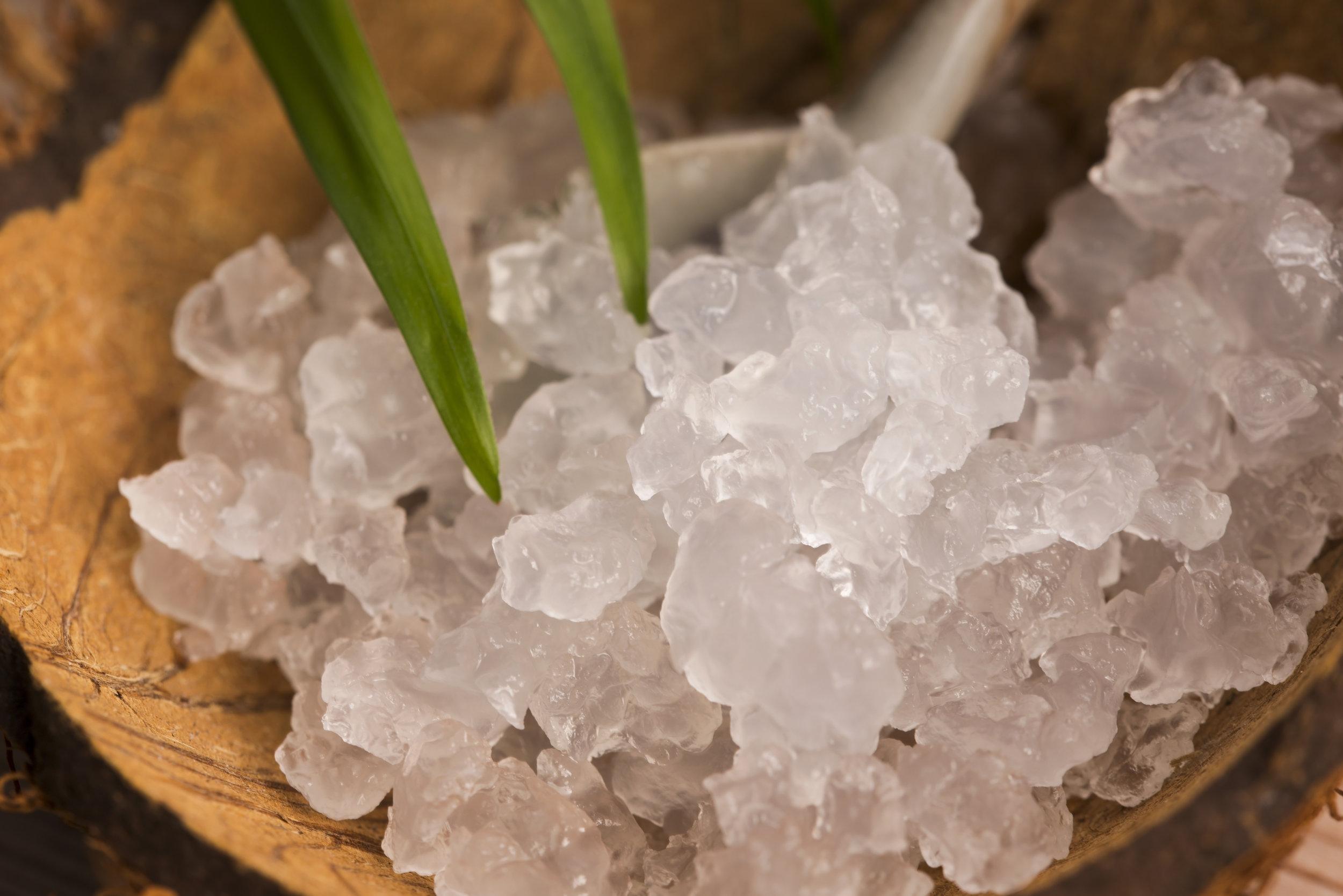 Water Kefir Grains in bowl.jpg