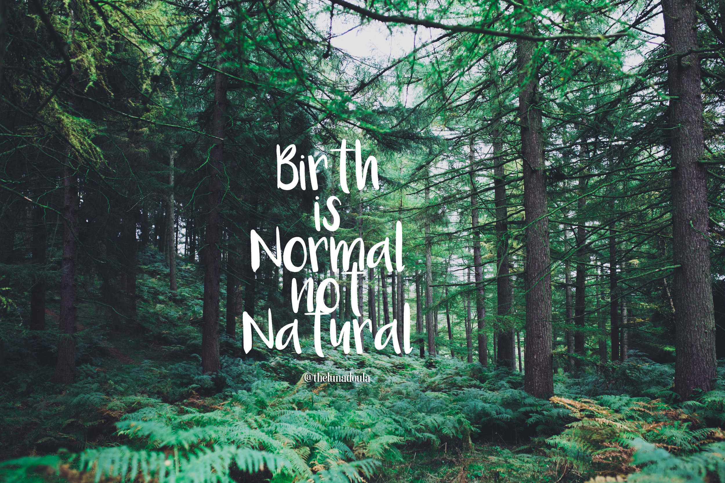 Birth is normal not natural.jpg