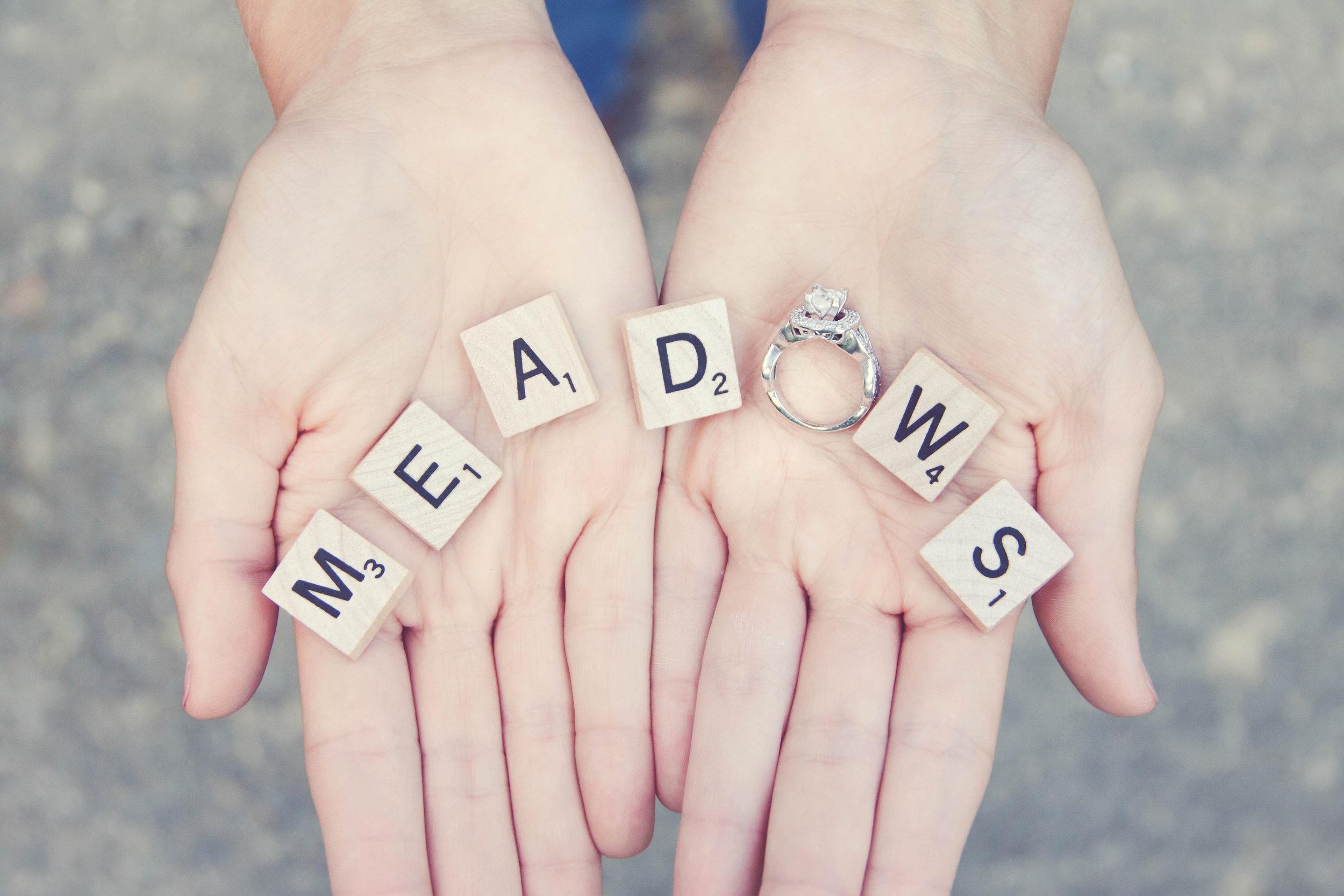 The Meadows7 .jpg