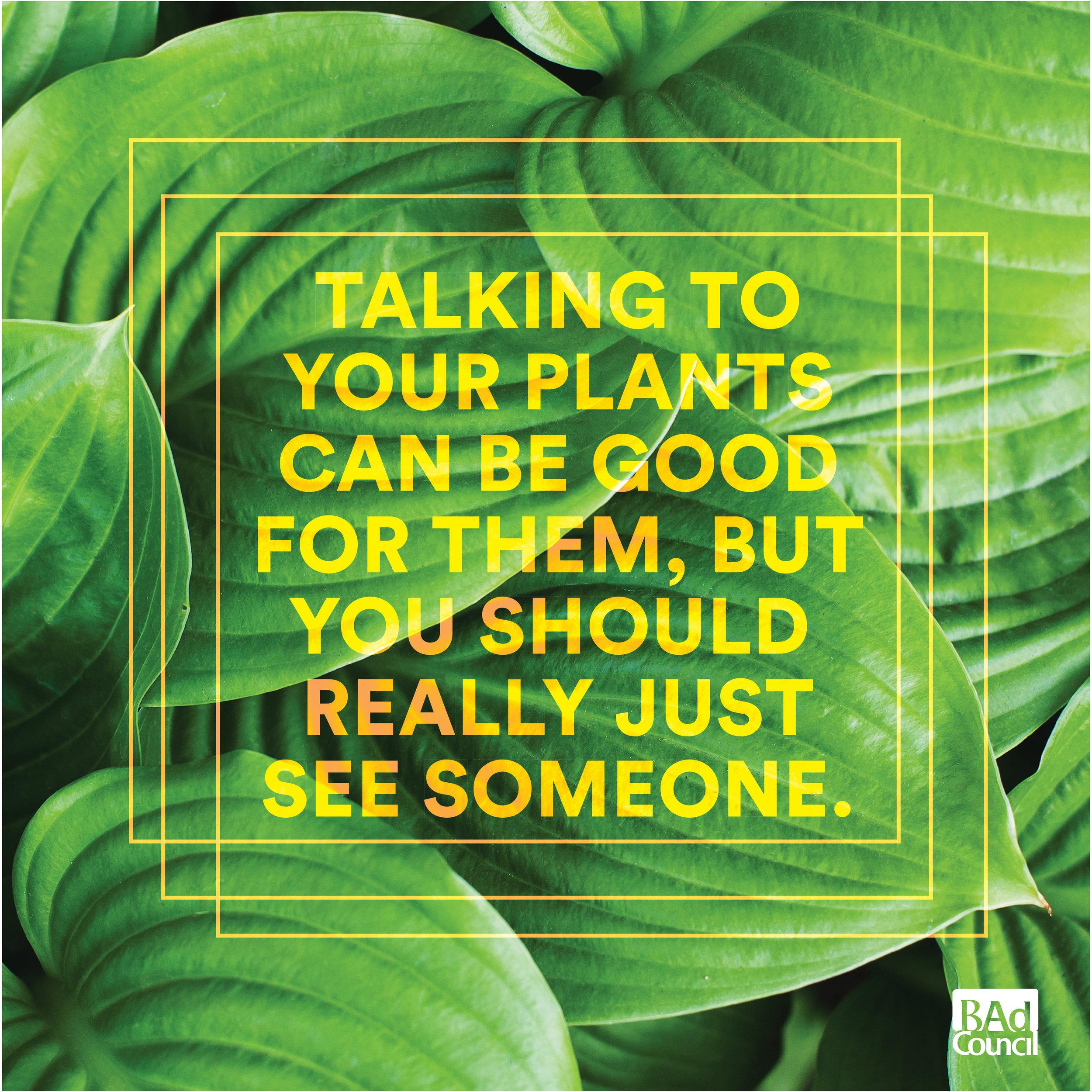 talkingtoplants.jpg