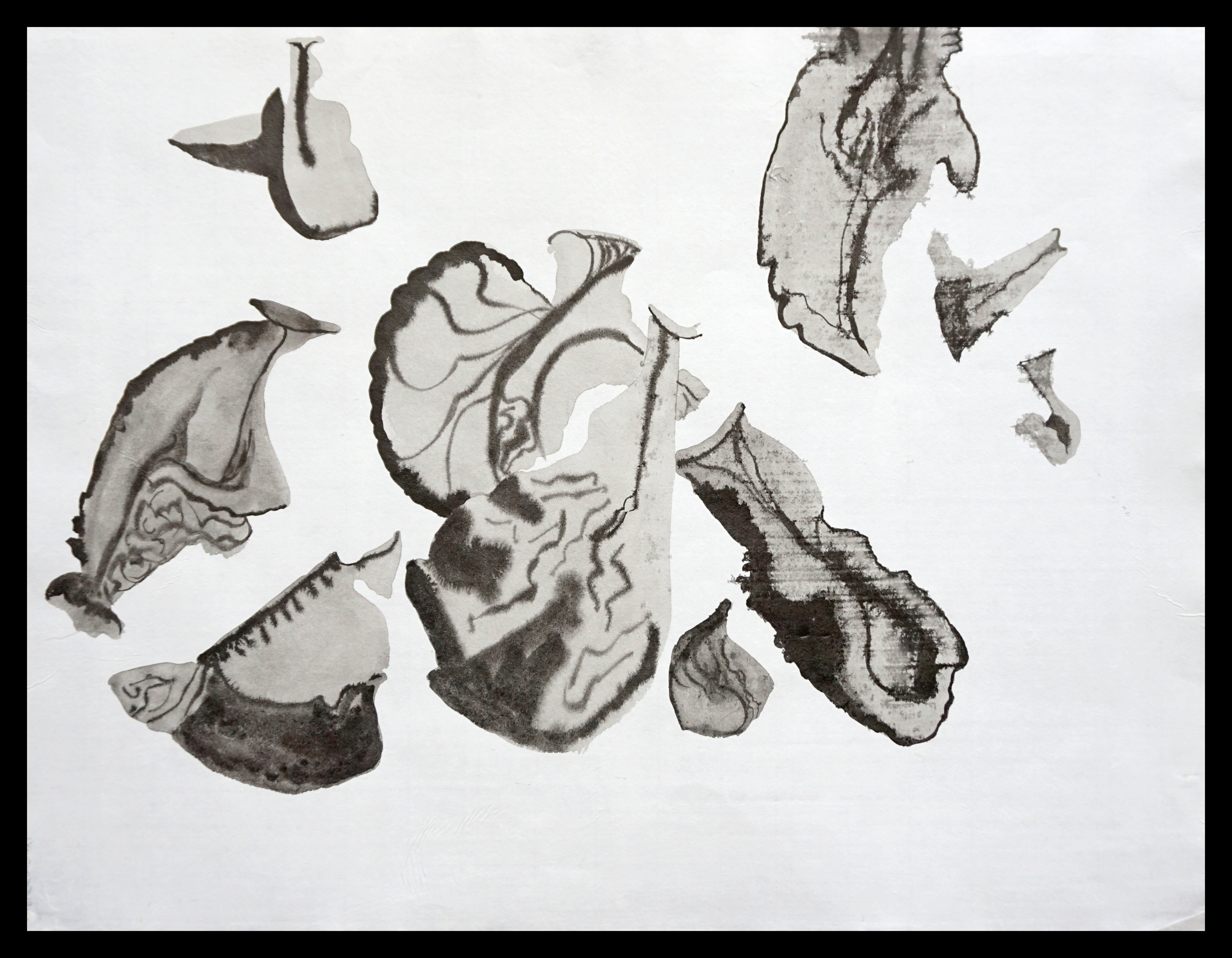 Leaf Alphabet 6
