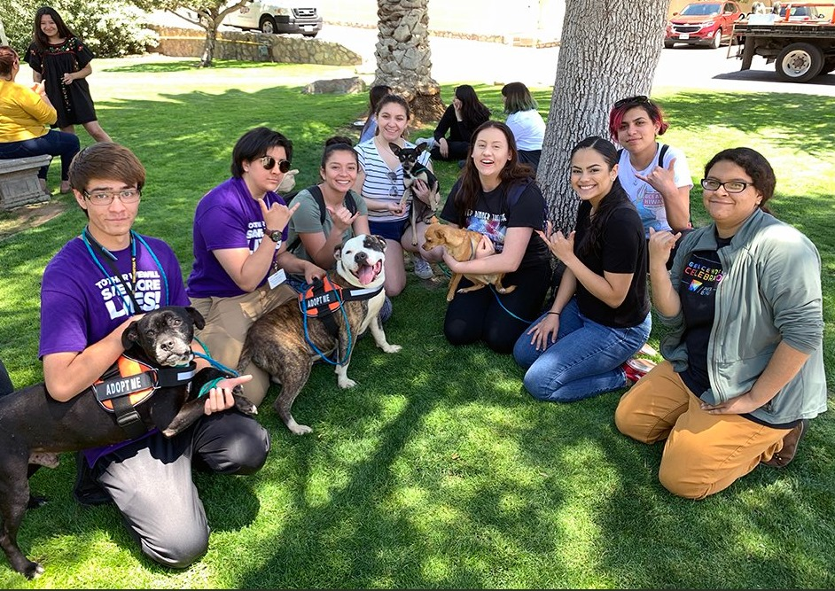 Students de-stressed with adorable pups as part of UTEP Student Engagement and Leadership Center's Spring 2019 Finals Week activities.