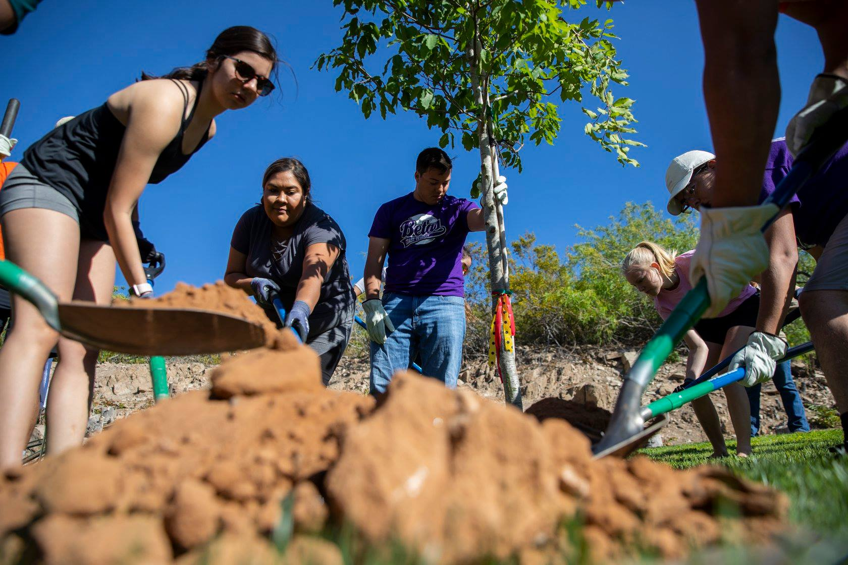 Students in UTEP Greek organizations celebrated Arbor Day in April by working with members of Facilities Services to make campus a little greener. Earlier this year, UTEP received a Tree Campus USA designation from the Arbor Day Foundation, validating the University's continuous efforts to be a sustainable green space.