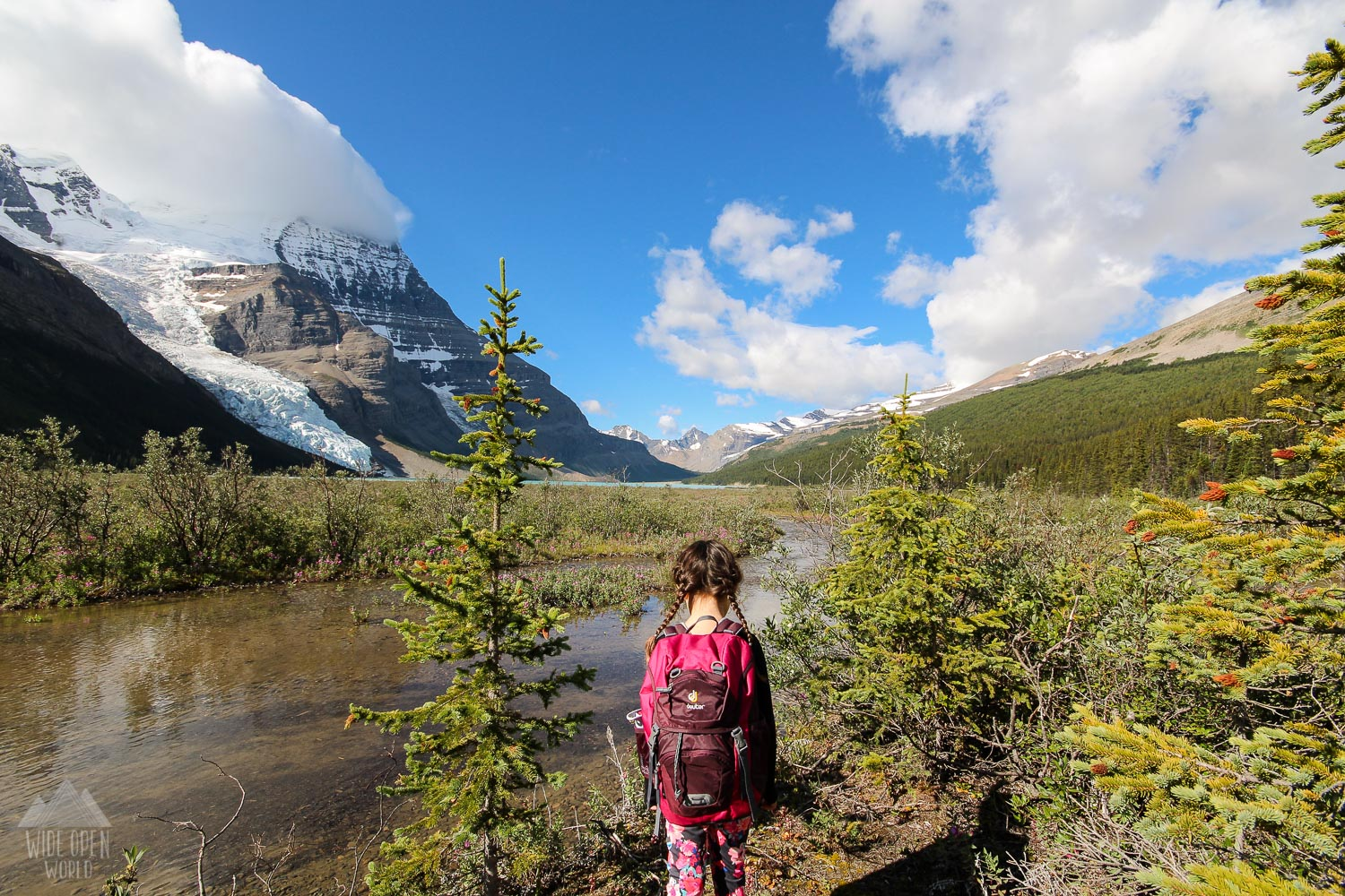 Hiking from Robson Meadows to Berg Lake.