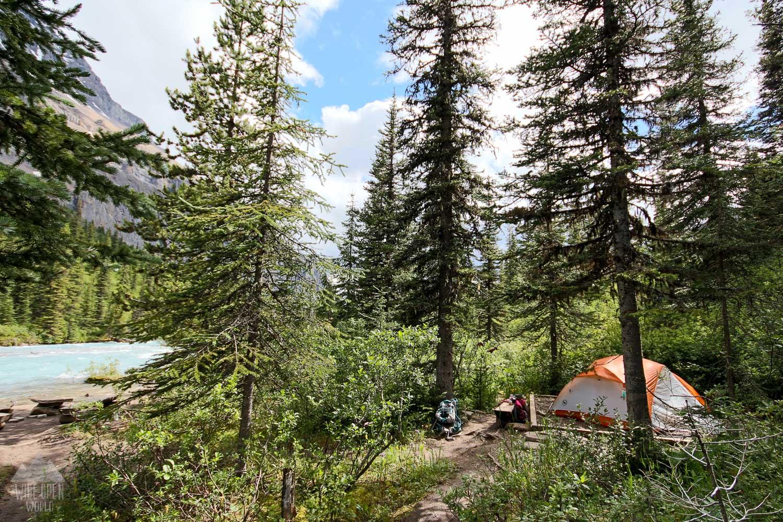 Tent pad at Emperor Falls campground.