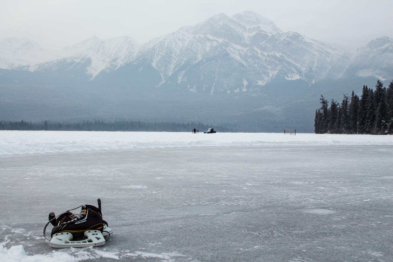 Jasper In January-13.jpg