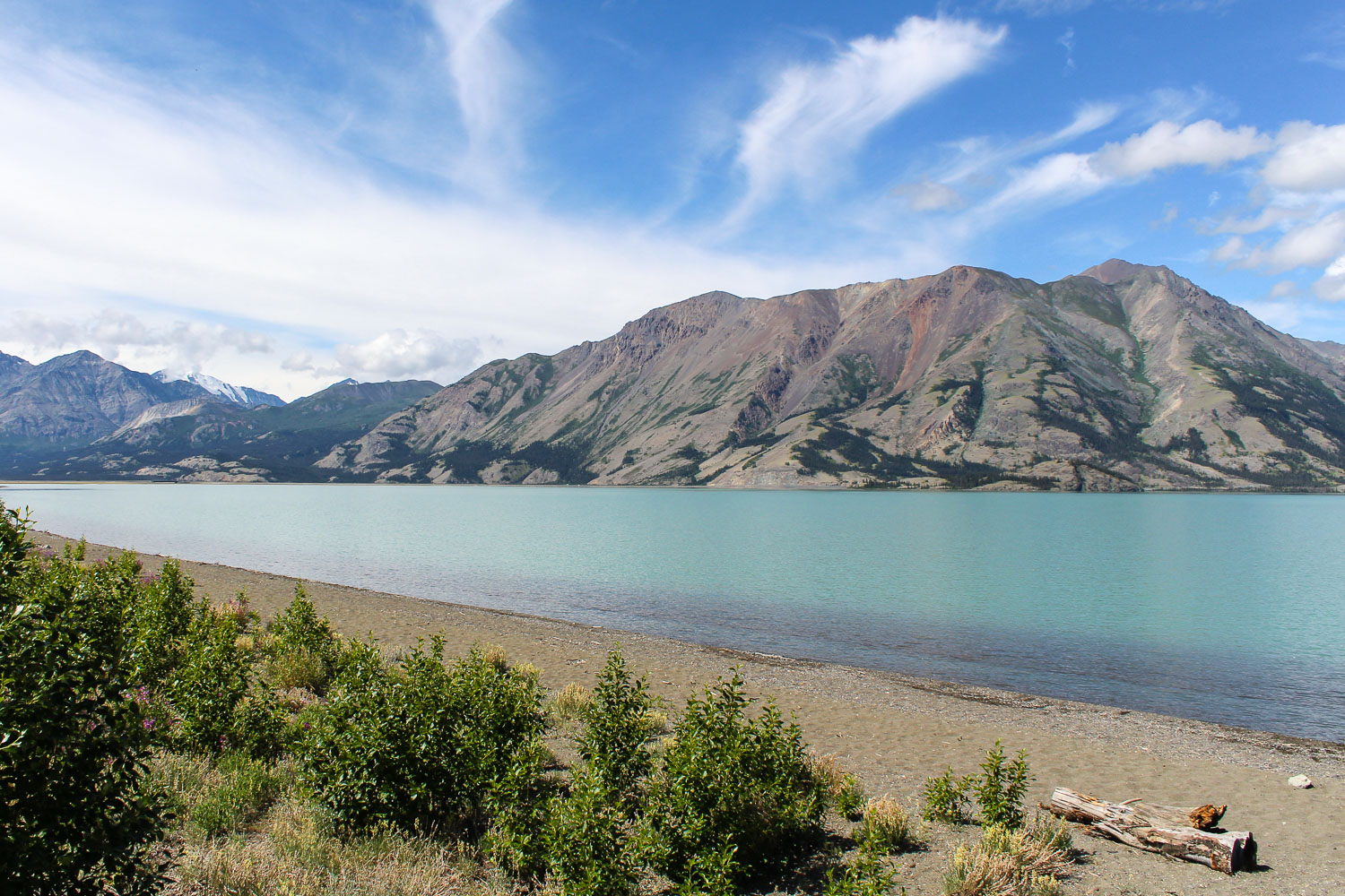 kluane_national_park.jpg