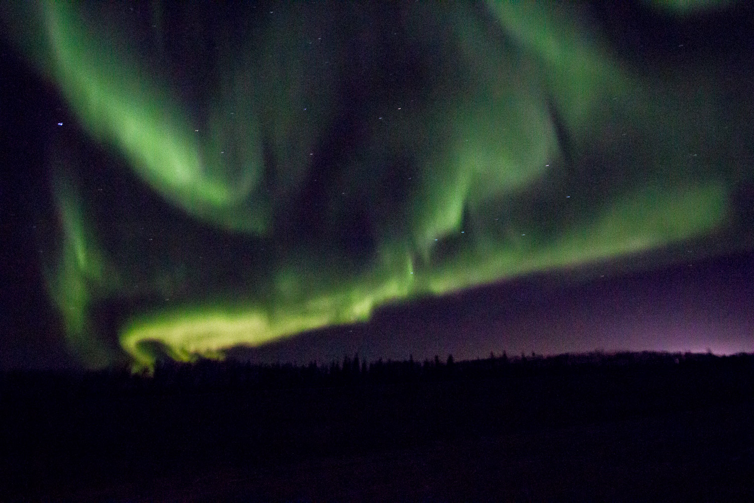 northern_lights_fort_mcmurray.jpg