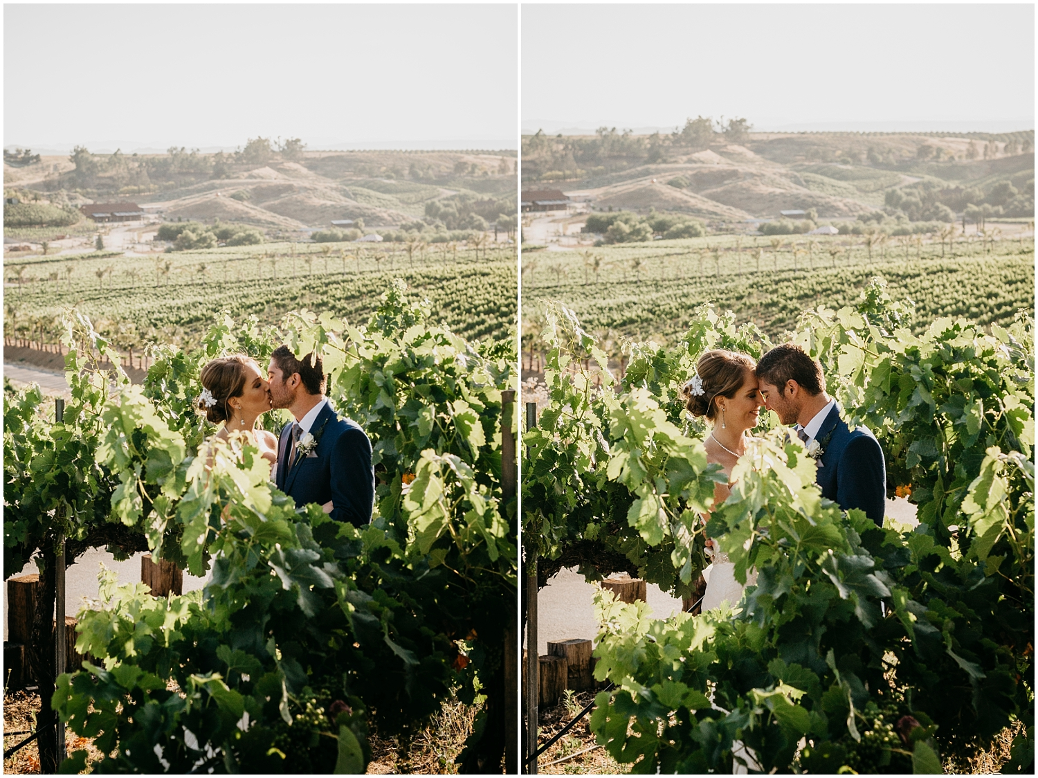 Falkner Winery Wedding (45).jpg
