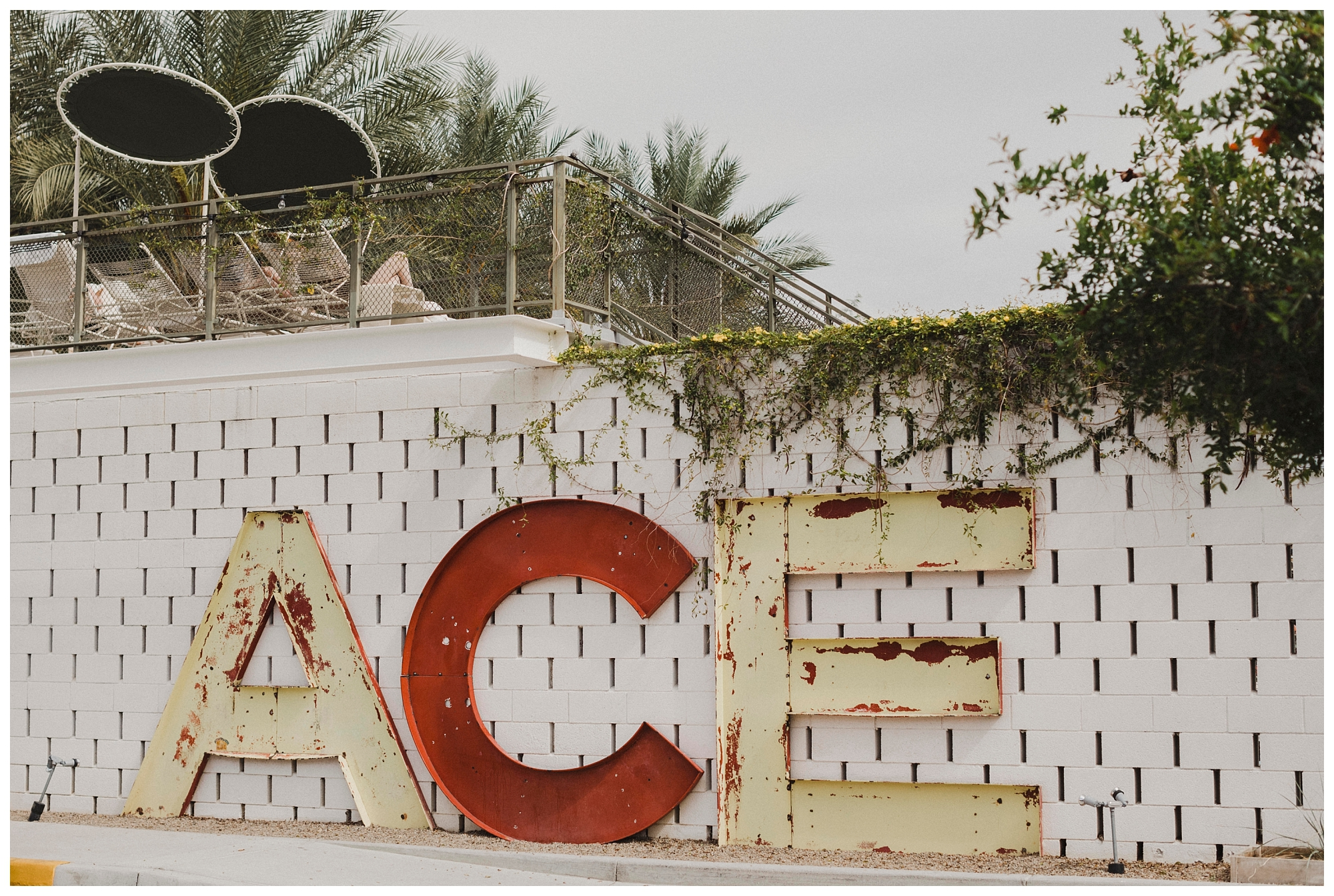 Ace Hotel Wedding Palm Springs (65).jpg