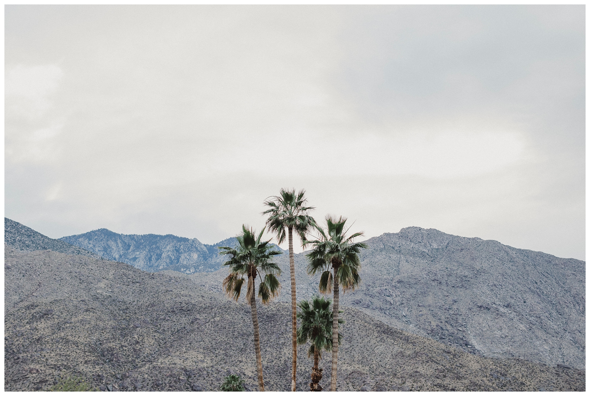 Ace Hotel Wedding Palm Springs (77).jpg