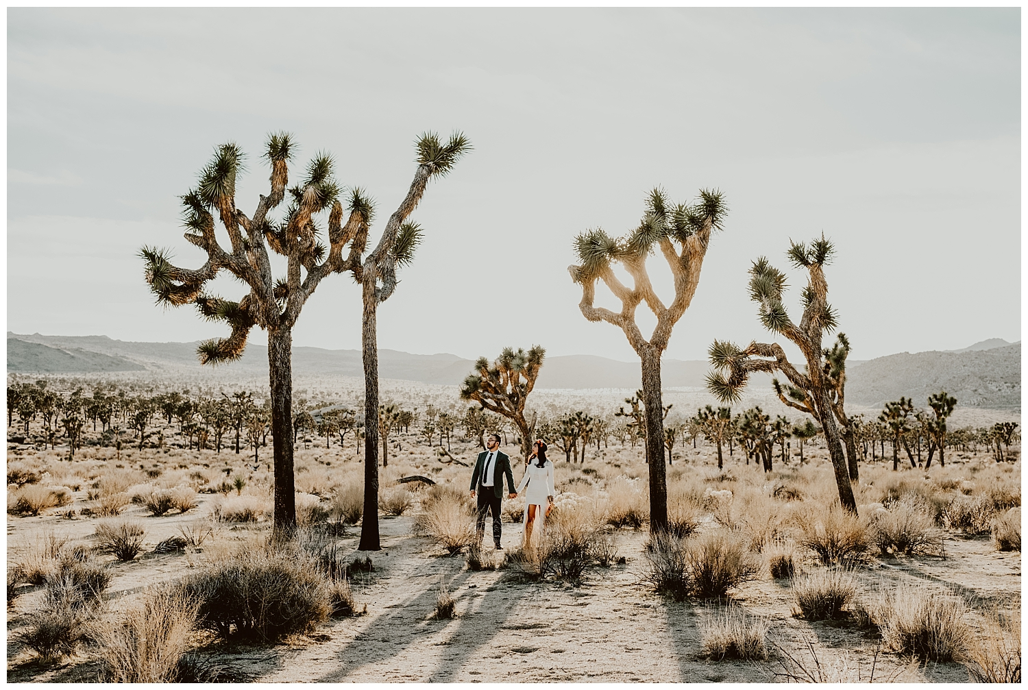Joshua Tree Park Engagement (22).jpg