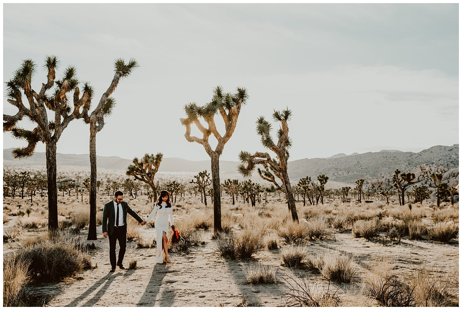 Joshua Tree Park Engagement (24).jpg