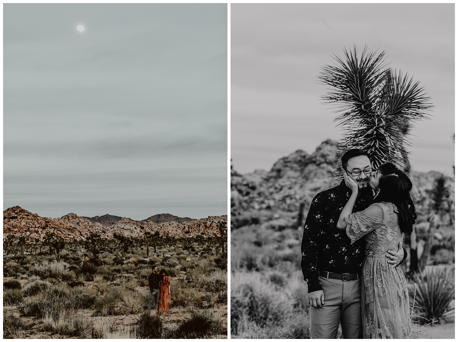 Joshua Tree Park Engagement (42).jpg