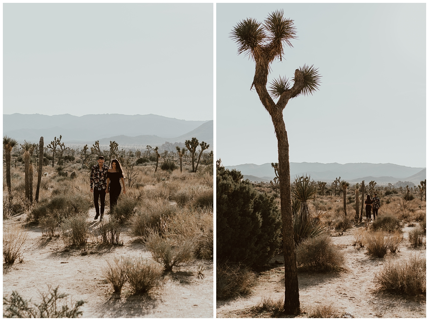 Joshua Tree Engagement (16).jpg
