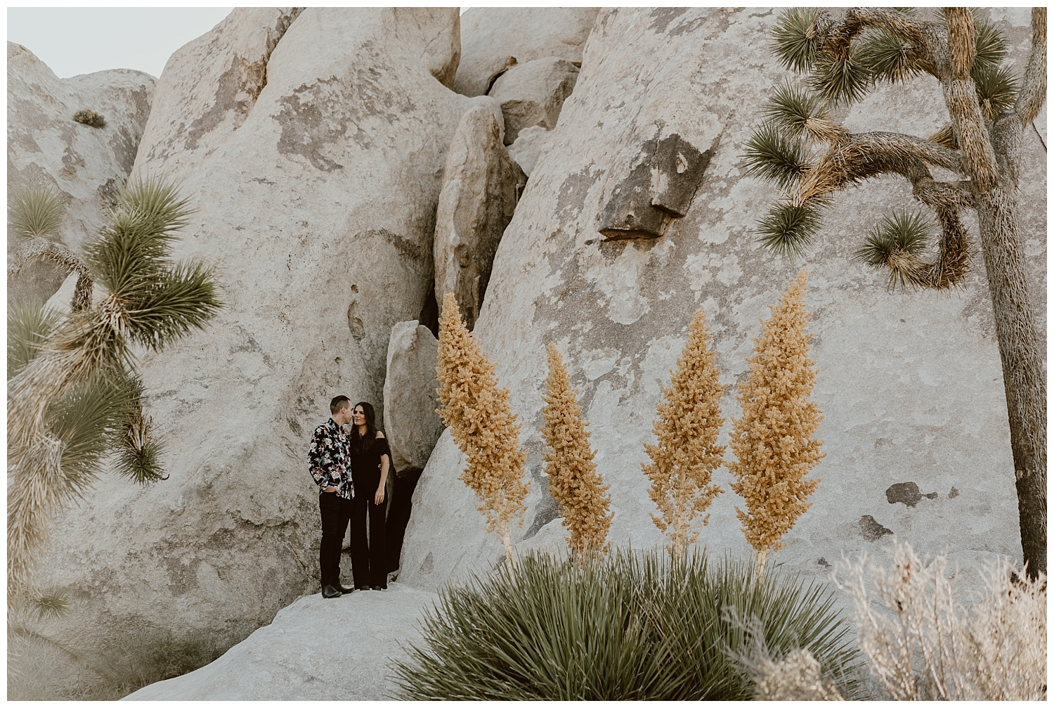 Joshua Tree Engagement (25).jpg