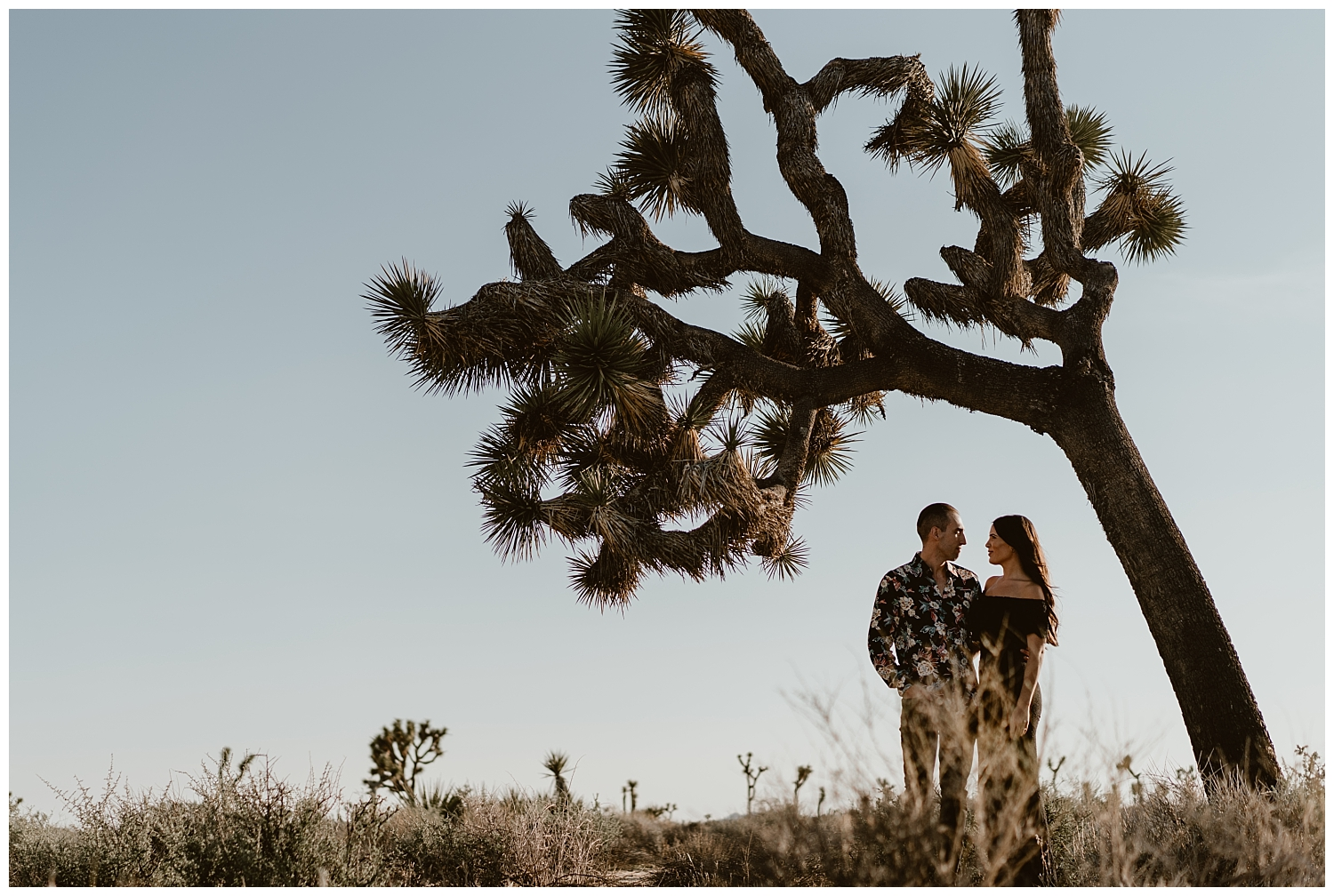 Joshua Tree Engagement (30).jpg