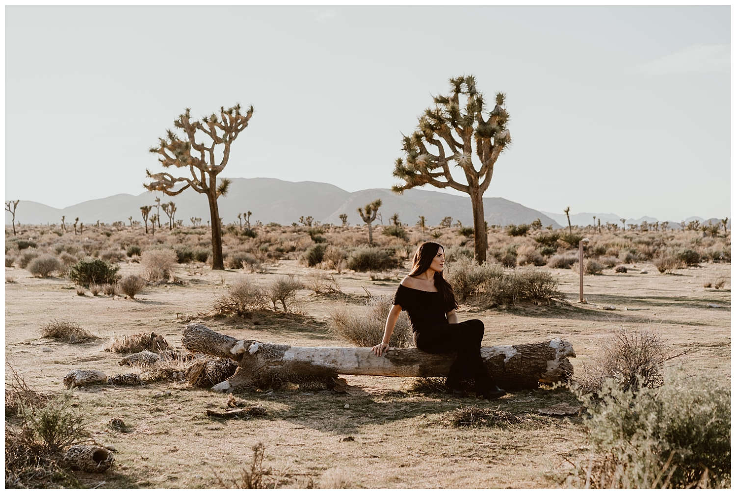 Joshua Tree Engagement (41).jpg