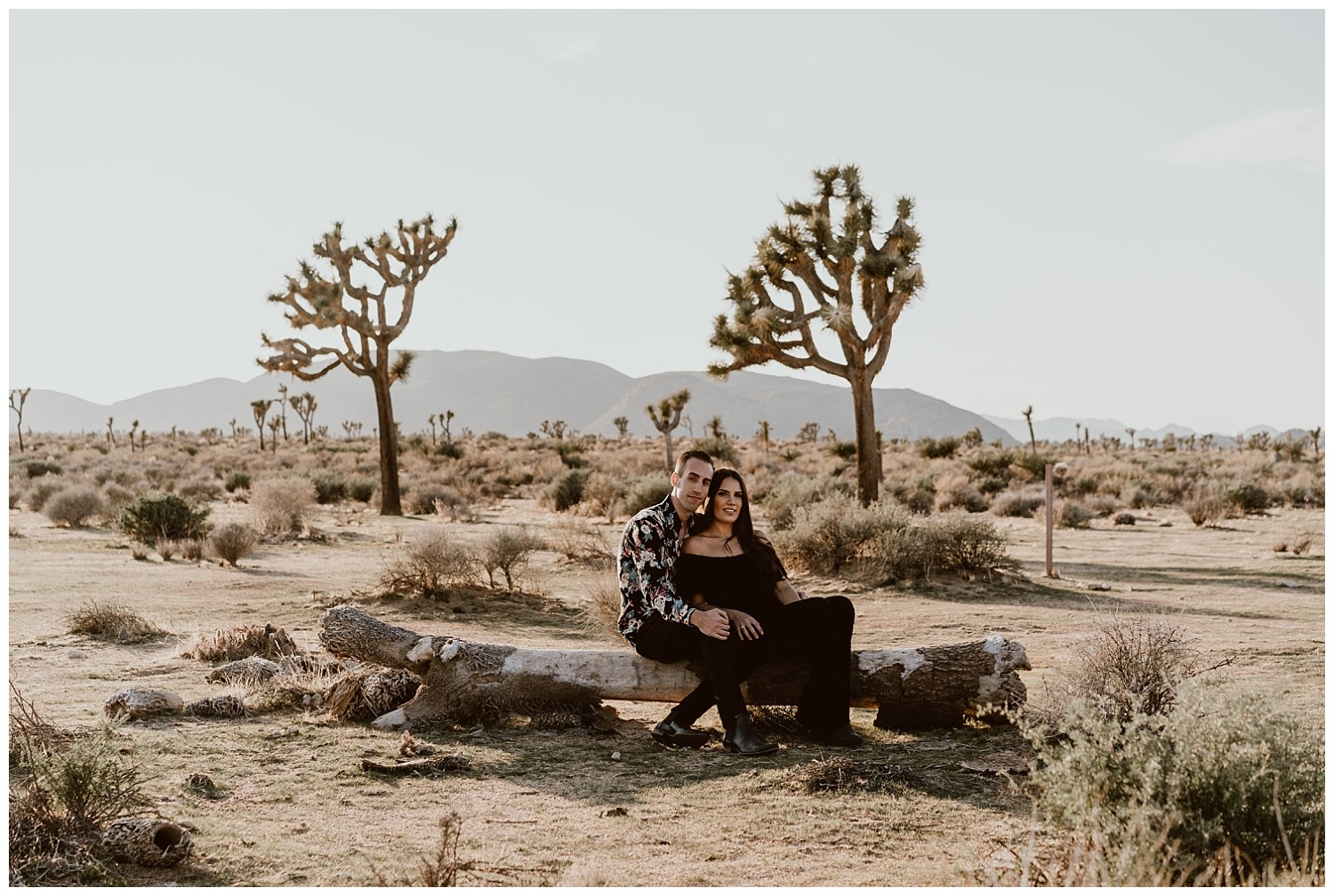 Joshua Tree Engagement (44).jpg