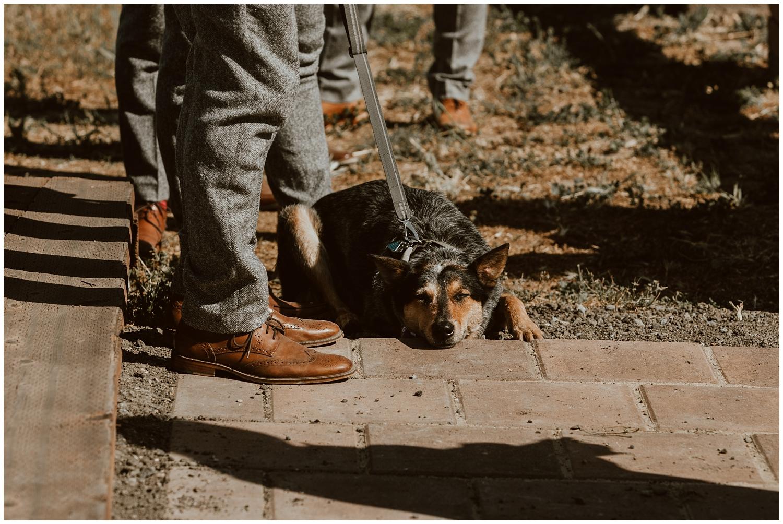 Spreafico-Farms-Wedding-San-Luis-Obispo-0047.jpg