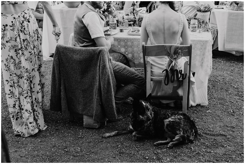 Spreafico-Farms-Wedding-San-Luis-Obispo-0098.jpg
