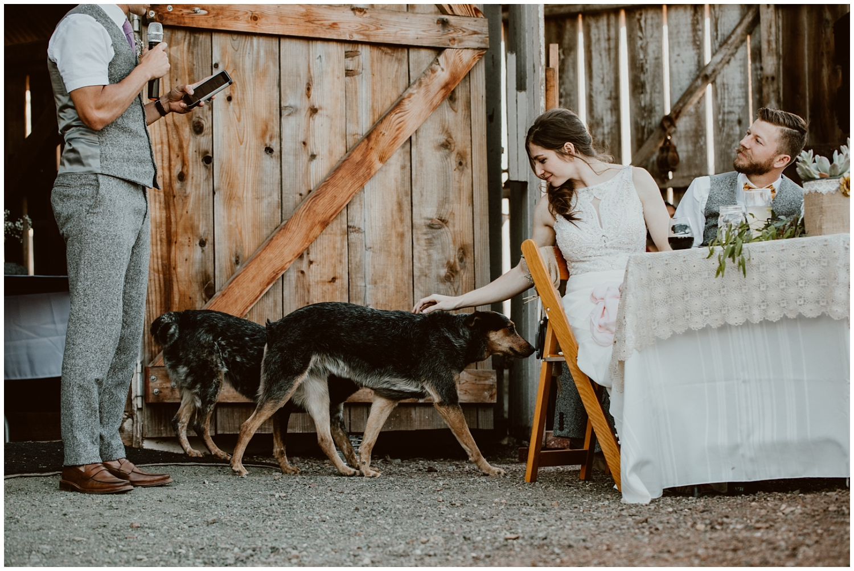 Spreafico-Farms-Wedding-San-Luis-Obispo-0112.jpg