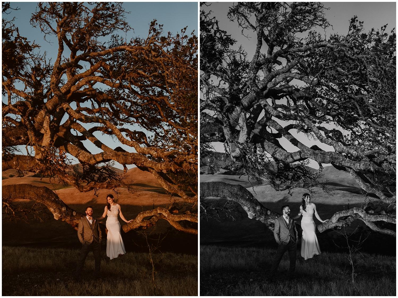 Spreafico-Farms-Wedding-San-Luis-Obispo-0133.jpg