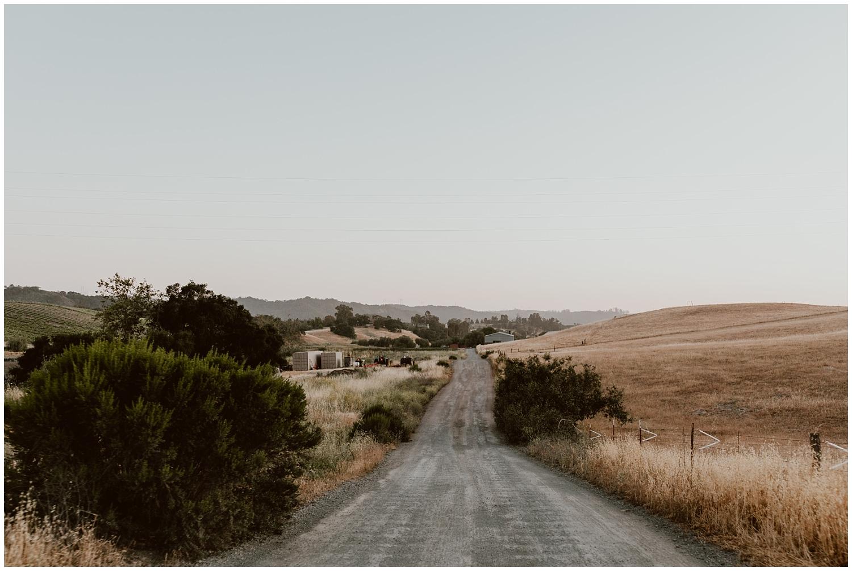 Spreafico-Farms-Wedding-San-Luis-Obispo-0149.jpg