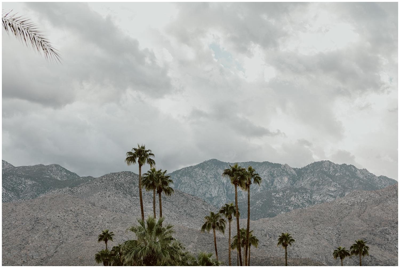 The-Saguaro-Palm-Springs-Wedding-0046.jpg