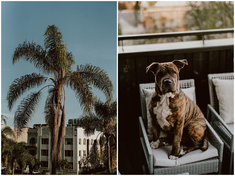 San-Diego-Beach-Engagement-0002.jpg