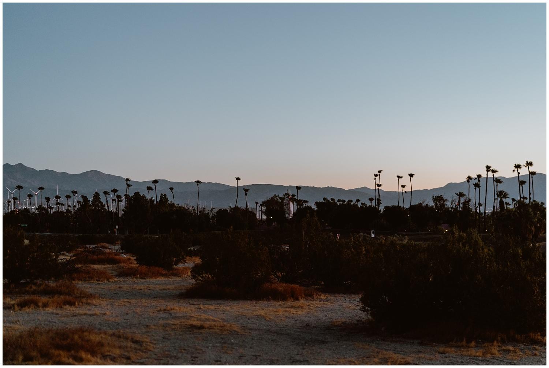 Palm-Springs-Engagement-0001.jpg