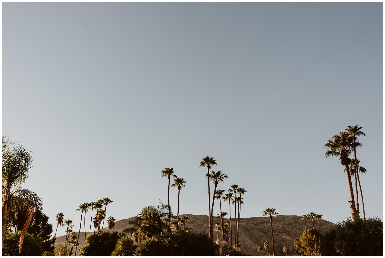 Palm-Springs-Engagement-0036.jpg