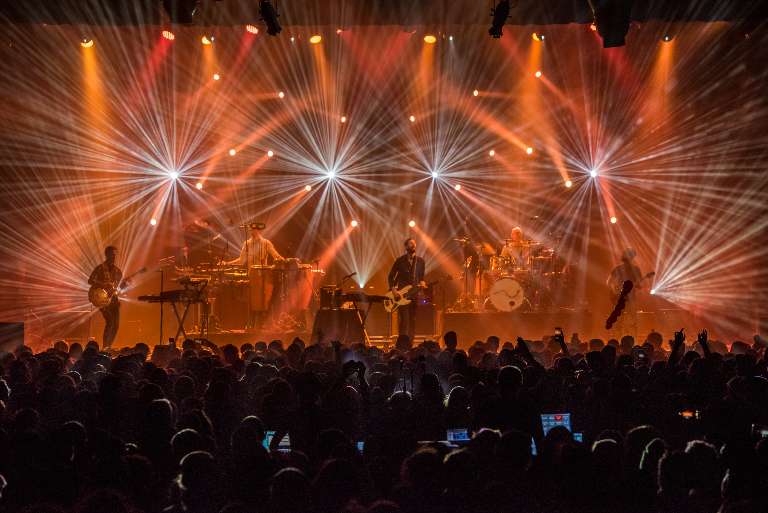 Lotus_Fillmore_2018-15.jpg