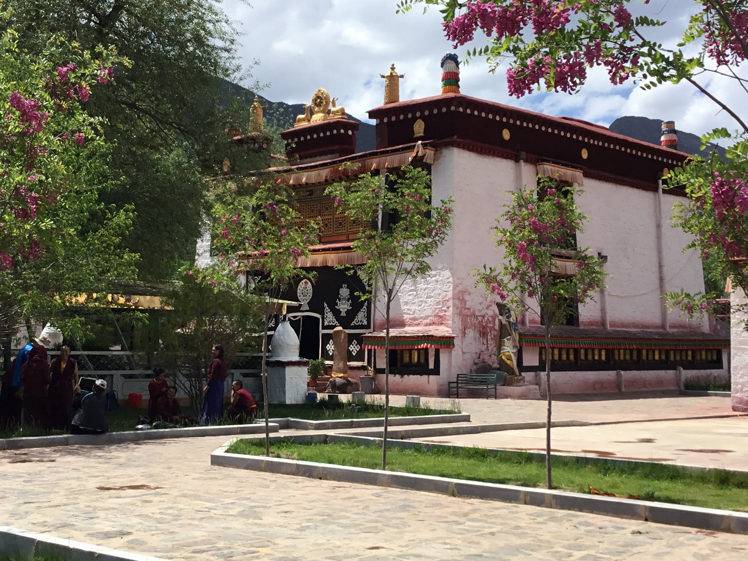 JUNE 29-JUNE30-JULY 1:Tsogyal Latso - After an early breakfast, on the way to Tsogyal Latso (about 30 minutes), we will stop at the amazing Zurkhardo stupas built by Shantirakshita to commemorate the place King Trisong Detsen first welcomed Padmasambhava to Tibet.Then we will arrive at Tsogyal Latso that is cradled in a valley that legend honors as the abode of Vajra Varahi and Saraswati. Tsogyal Latso is well known for Tsogyal's life-force lake or latso that spontaneously arose at the moment of her birth.This is the most heartwarming part of our pilgrimage. Lama Dechen Yeshe Wangmo and the Jnanasukha Foundation sangha care for this sacred place of the enlightened feminine, supporting the nuns and the complex since 2009. There are sixteen nuns in residence and it is a joy to meet them and spend time together. This year, Lama Wangmo is again bringing a healthcare team to help the nuns.Our time at Tsogyal Latso over these three days will be relaxed as we have the opportunity to do personal practice in t e new temple, enjoy the new murals, take walks and explore the sacred places such as Tsogyal' breast milk springs, her still-thriving life-force tree, birthplace stupa, and more. To learn more about Tsogyal Latso, please visit this website.Each evening, we will drive back to the Samye Monastery Hotel bringing out total stay there to six nights.
