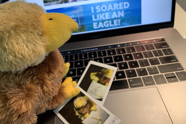 Wedgie (that's me!) prepping ideas for the Eagle Showbags