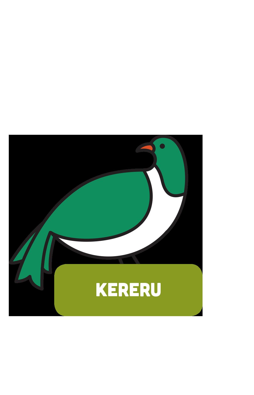 Kererū Pārua