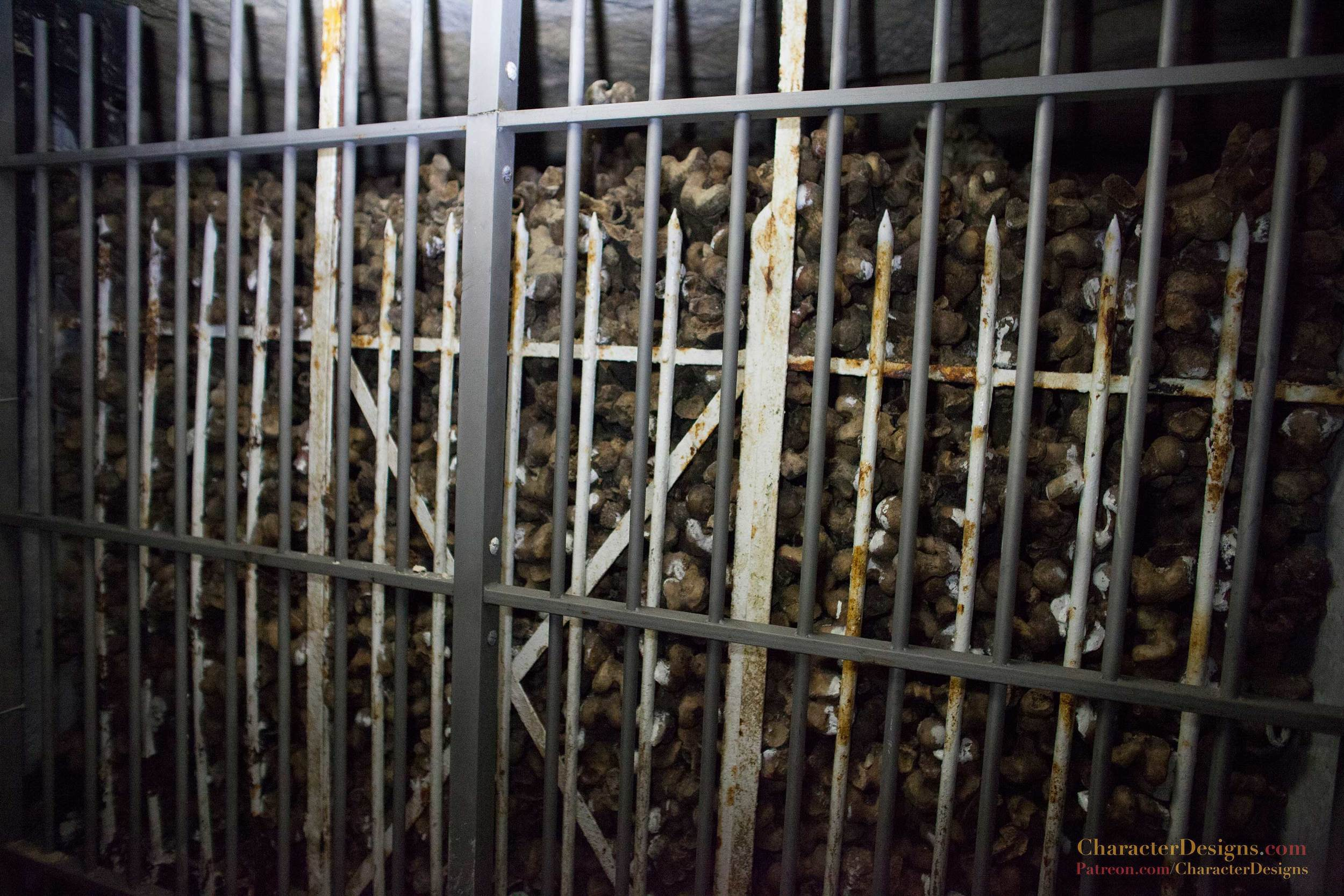 Catacombs_084.jpg